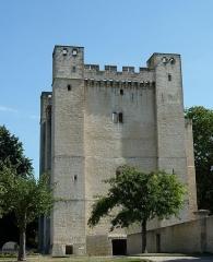 Château fort - Français:   Château de Chambois