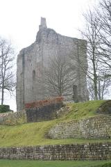 Château - Français:   Château de Domfront - Domfront - Orne - France - Mérimée PA00110791