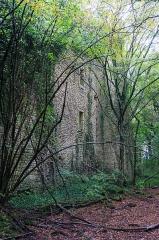 Château de Ledavrée (restes) - English: Château de Lédavrée de Clamerey, France. Monument historique.