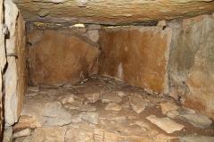 Dolmen dit La Pierre-Brûlée - Français:   Intérieur du dolmen de Pierre-Brûlée (Volnay), vue côté gauche en entrant.