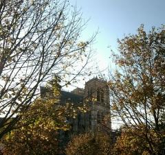 Eglise Saint-Vulfran ou ancienne collégiale - Collégiale Saint-Vulfran (ou Saint-Wulfran) d'Abbeville (Somme) vue de la place du marché.