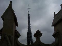 Cathédrale Notre-Dame - Amiens - Tours de Notre-Dame: Flèche.