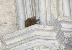 Eglise Notre-Dame-des-Pommiers - Français:   Le comte de Saillans fut l\'instigateur du troisieme camp de Jalès, épisode de la contre-revolution en juillet 1792. Arrete et decapite aux Vans , sa tete fut ramenee a Largentiere et repose depuis sur un des piliers de Notre Dame des Pommiers