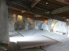 Château - Donjon de Crest (Drôme)