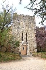 Château des Adhémar ou des Papes - Français:   Montélimar (Drôme, France), le château des Adhémar ou des papes
