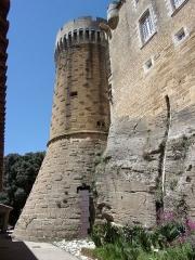 Château et son parc - Château de Suze la Rousse