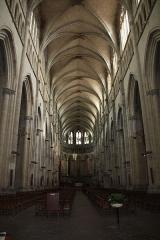 Eglise Saint-Maurice, anciennement cathédrale - Cathédrale Saint-Maurice à Vienne, Isère, France