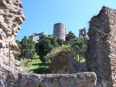 Château de Couzan (restes) - Français:   Vue du château de Couzan