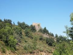 Château de Couzan (restes) - Français:   Vue duChâteau de Couzan