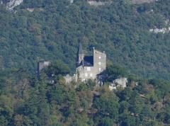Château de Châtillon - English: Sight, from Portout, of Châtillon castle, in Savoie, France.