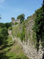 Domaine des châteaux d'Allinges ou des Allinges - Français:   Château-Vieux d'Allinges, Haute-Savoie, France