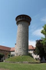 Château - Français:   Donjon du château de Faverges