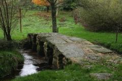 Planche sur la Couze dite Pont romain - Français:   Pont dit Romain au Bourg