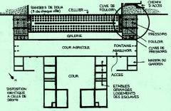 Site vinicole gallo ; romain dit Le Mollard - Villa gallo-romaine du Molard à Donzère avec son cellier contenant 204 dolia, 2 fouloirs et 4 pressoirs à vin