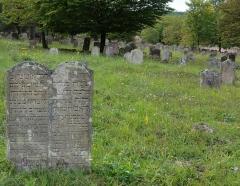 Cimetière juif -  Alsace, Bas-Rhin, Rosenwiller, Cimetière juif (PA00135148, IA00075623): Pierres tombales (XVIIIe).