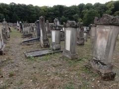 Cimetière juif -  Alsace, Bas-Rhin, Rosenwiller, Cimetière juif (PA00135148, IA00075623): Pierres tombales (XIXe-XXe).