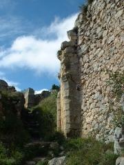 Château cathare - Español: Ruinas del castillo de Roquefixade (Francia)