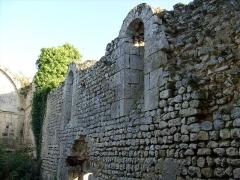 Eglise Notre-Dame de Monthérault -  Ruines de l'église de Monthérault