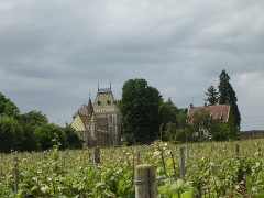 Château de Corton-André -  Aloxe Corton. Château Corton-André. Domaine viticole à Aloxe-Corton (Bourgogne, France)