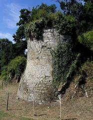 Ruines du château de La Chèze - Français:   Château de La Chèze (22).