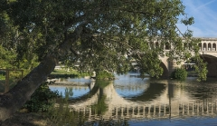 Canal du Midi : pont-aqueduc - English: A Populus alba (silver poplar) tree in front of the Orb Aqueduct (Pont-canal de l'Orb) reflected in the Orb River. Béziers, Hérault, France