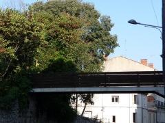 Jardin de la Reine et bâtiments de l'ancien Rectorat, ancienne Intendance du Jardin des Plantes - Català: Jardí de la Reine (Montpeller)