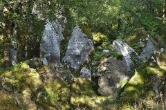 Site archéologique de la phosphatière du Cloup d'Aural -  Phosphatières du Cloup d'Aural - 20140925 - Dents de dragon
