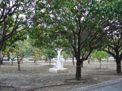 Propriété dite Le Palais Carnoles -  Jardin d'agrumes du Palais Carnolès à Menton.