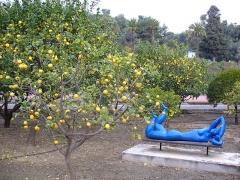 Propriété dite Le Palais Carnoles -  Jardin d'agrumes du Palais Carnolès à Menton