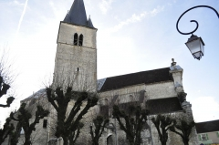 Eglise Saint-Maclou -  Bar-sur-Aube: église Saint Maclou.