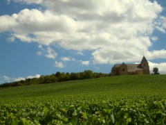 Eglise - English: A church, Église Saint-Martin de Chavot, amongst the vines in the Champagne-growing region of France. (In the Chavot-Courcourt commune, close by Pierry, outside of Épernay).