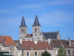 Eglise Saint-Jean-Baptiste -  Basilique Saint Jean-Baptsite de Chaumont (52)