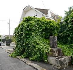 Aqueduc des Eaux de Rungis (également sur communes de Rungis, Fresnes, Cachan, Arcueil, Gentilly et Paris 14) - English: L'Haÿ-les-Roses, Val-de-Marne, France. Regard 6 from aqueduc Médicis.