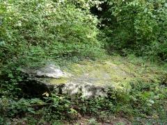 Menhir -  Grande Pierre de Jouy.