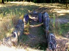 Allée couverte dite cimetière des Anglais - Français:   Vue depuis l\'ouest (sentier de promenade). Plusieurs pierres sont couvertes de tags; le site n\'est ni protégé ni mis en valeur.