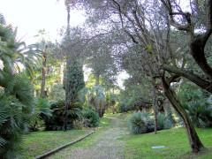 Villa Rothschild - Français:   Cannes - Villa Rothschild -Parc