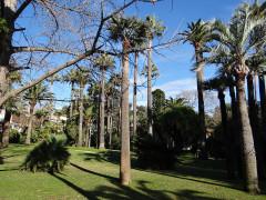 Villa Rothschild - Français:   Cannes - Villa Rothschild - Parc
