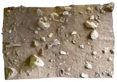 Grotte préhistorique du Lazaret - Français:   Moulage d\'une partie du sol archéologique UA28, réalisé dans la grotte du Lazaret (Nice, Alpes-Maritimes, France). Le frontal humain (Lazaret n°24) découvert durant l\'été 2011, est visible en place, au centre de l\'image.