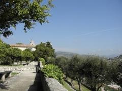 Monastère franciscain de Cimiez -  Jardin du Monastère de Cimiez - Nice