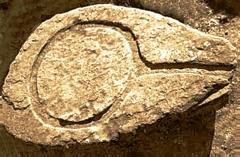Vestiges de l'oppidum celto-ligure d'Entremont - Maie de pressoir antique à Entremont