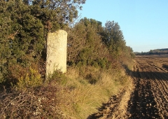 Borne milliaire romaine - English: Borne miliaire de la Via Aurelia, en bordure d'un champ, le long de la route départementale 17 d'Eguilles à Pélissanne (Bouches-du-Rhône).