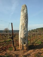 Menhir de Champduy - English: Menhir nammed Peïro Plantado, in Cabasse, Var
