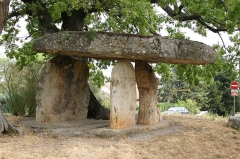 Dolmen dit La pierre de la Fée -  This stone is pre-historic. It is build by the celtic and plase near det town Draguignan in de department Var i Provence - France.