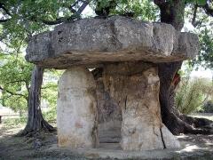 Dolmen dit La pierre de la Fée - English: Draguignan Dolmen Pierre de la fée