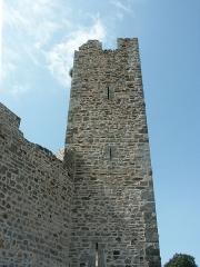 Château -  Une des tours de la première enceinte médiévale de la ville de Hyères. Cette enceinte protégeait la ville haute et ne serait pas antérieure au XIIIe siècle. Cette tour,  photographiée extra-muros, est la seconde en partant de l'ouest qui flanquait la courtine venant prendre appui à l'angle nord-est du château proprement dit.