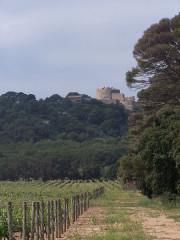 Château Sainte-Agathe -  Fort-Agathe