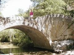 Pont à coquille franchissant l'Aigue-Brun -  Pont à la Coquille Aigue Brun M. Disdero  Juillet 2004