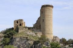 Château de l'Hers ou de l'Airs (ruines) - English: Château de l'Hers (Châteauneuf-du-Pape) viewed from the Rhone