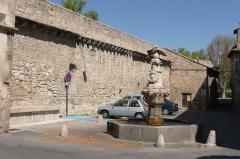 Fontaine du Pélican - Français:   Fontaine à proximité de la halle à Pernes-les-Fontaines