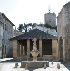Porte Notre-Dame, pont qui la précède ainsi que la chapelle et l'auvent couvert -  the village of Pernes les Fontaines, France